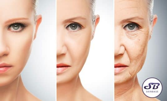 How Does Skin Age